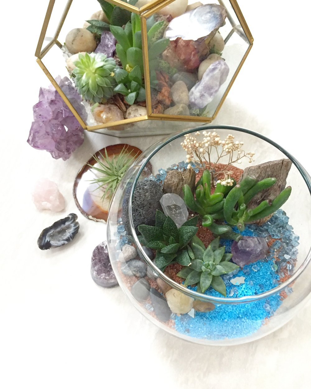 Succulent terrariums - LIGHT:Indoors, bright indirect lightWATER:Water sparingly at base of plants once every 2-3 weeks in hotter months, and every 3-4 weeks in cooler months. Only water if soil is dry.MAINTENANCE:Remove any fallen, soggy or dried leavesRemove any plants that might be failing (replace with a succulent clipping if desired)If plant starts to look like its stretching out move to area with more light.
