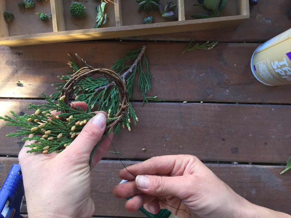 Step 2: Wrap your winter green clipping