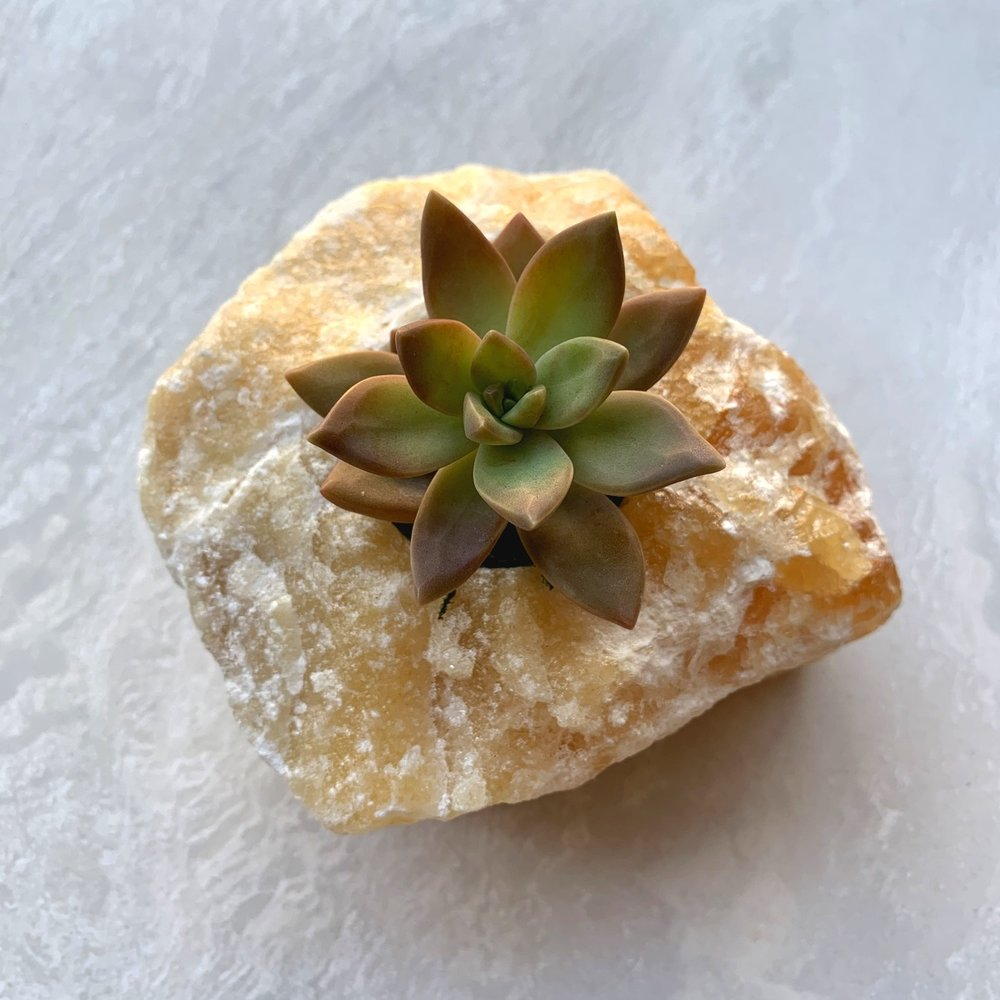 Orange Calcite is a powerful healing stone, helping to merge the spiritual world with our physical bodies.  SACRAL & SOLAR PLEXUS CHAKRAS