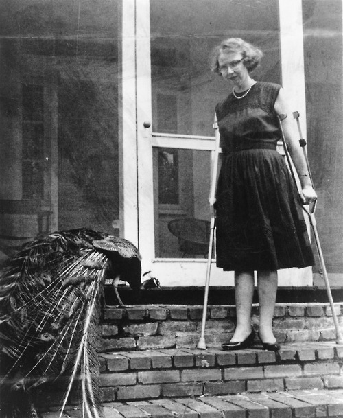 Flannery O'Connor & Peacock. Here's a story.