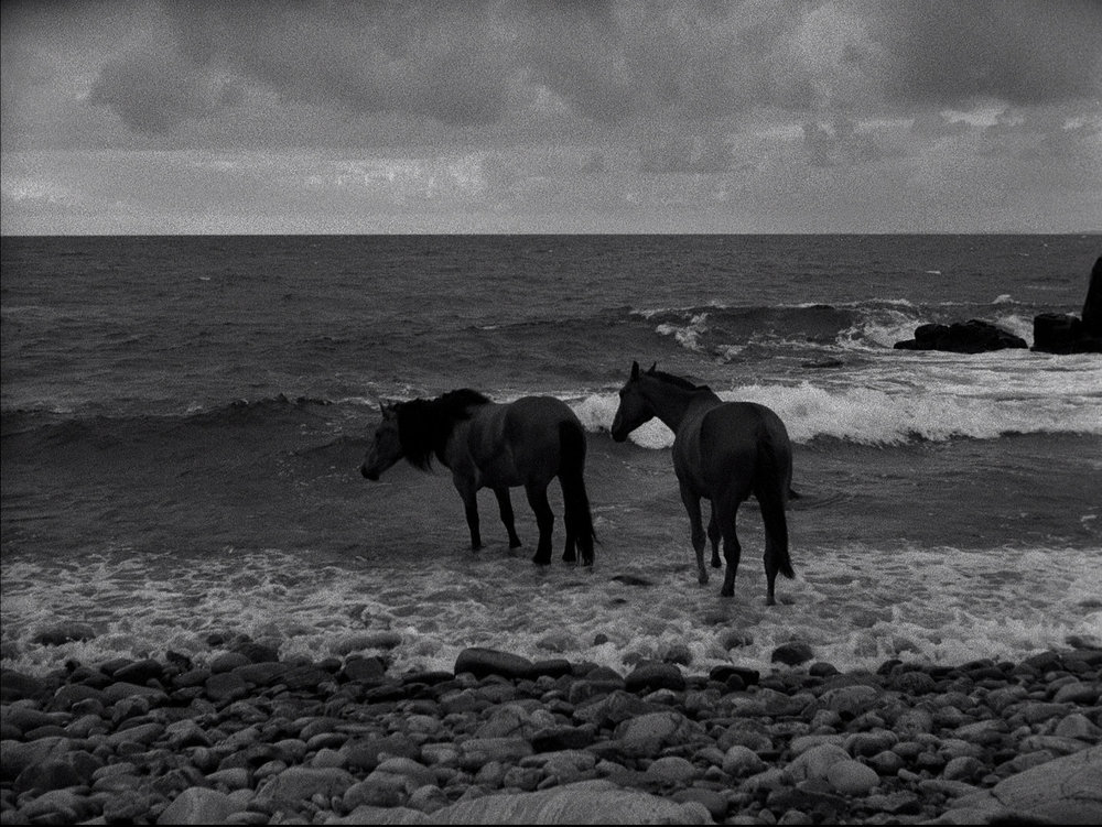 The Seventh Seal - 1957