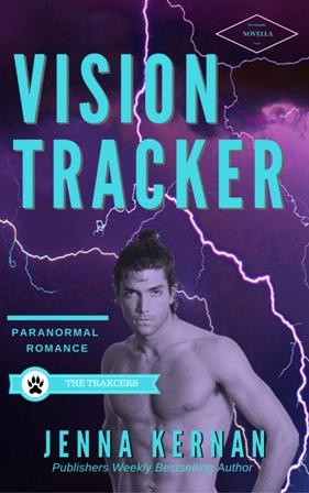 VISION TRACKER 200.jpg