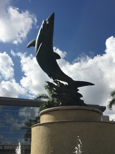Nova Southeastern University - The Sharks!