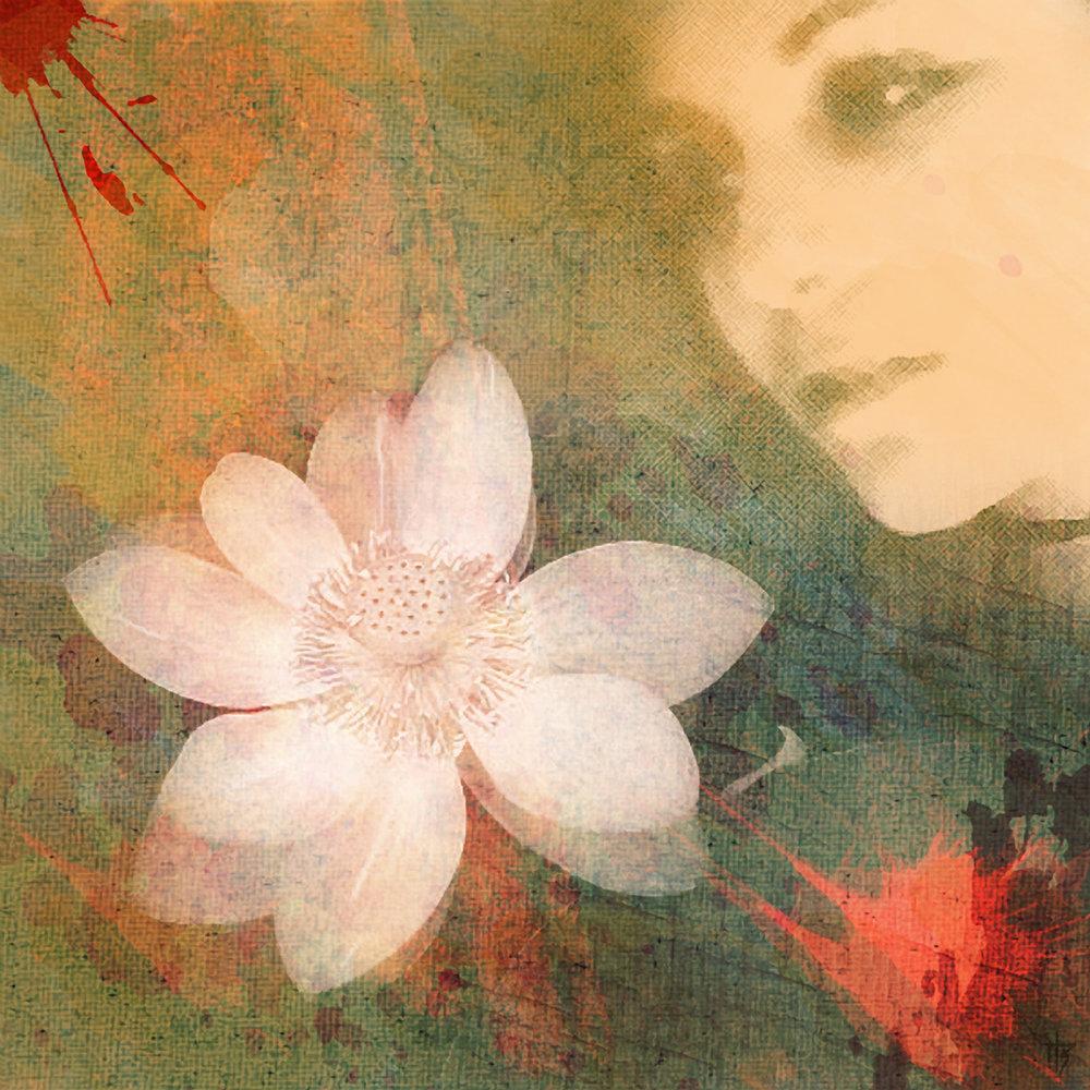 lotusdream.jpg