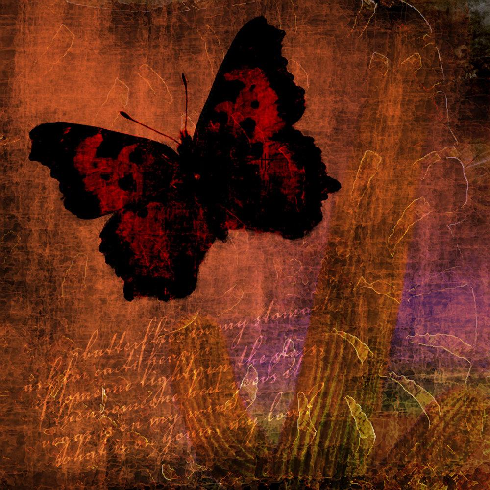 butterfliesinmystomach.jpg