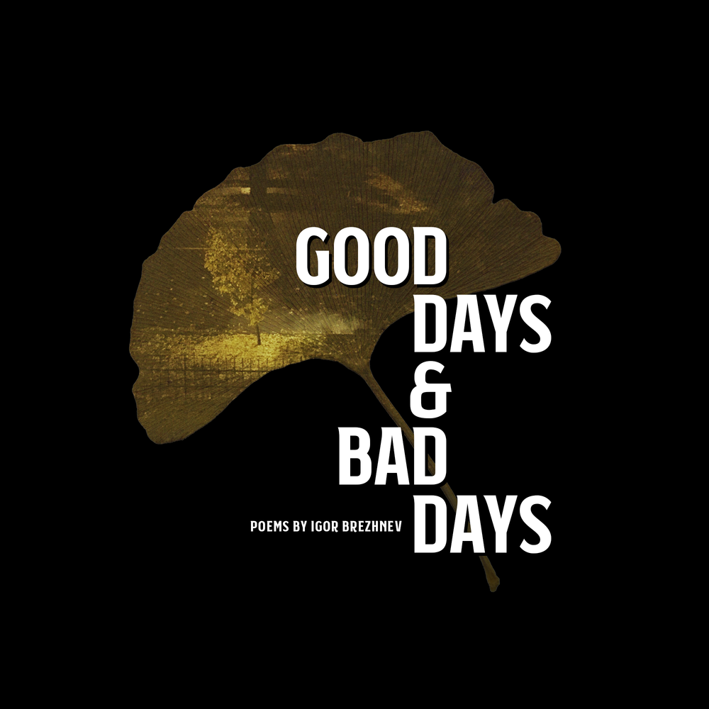 good-days-and-bad-days-cover-ForWebCover.png