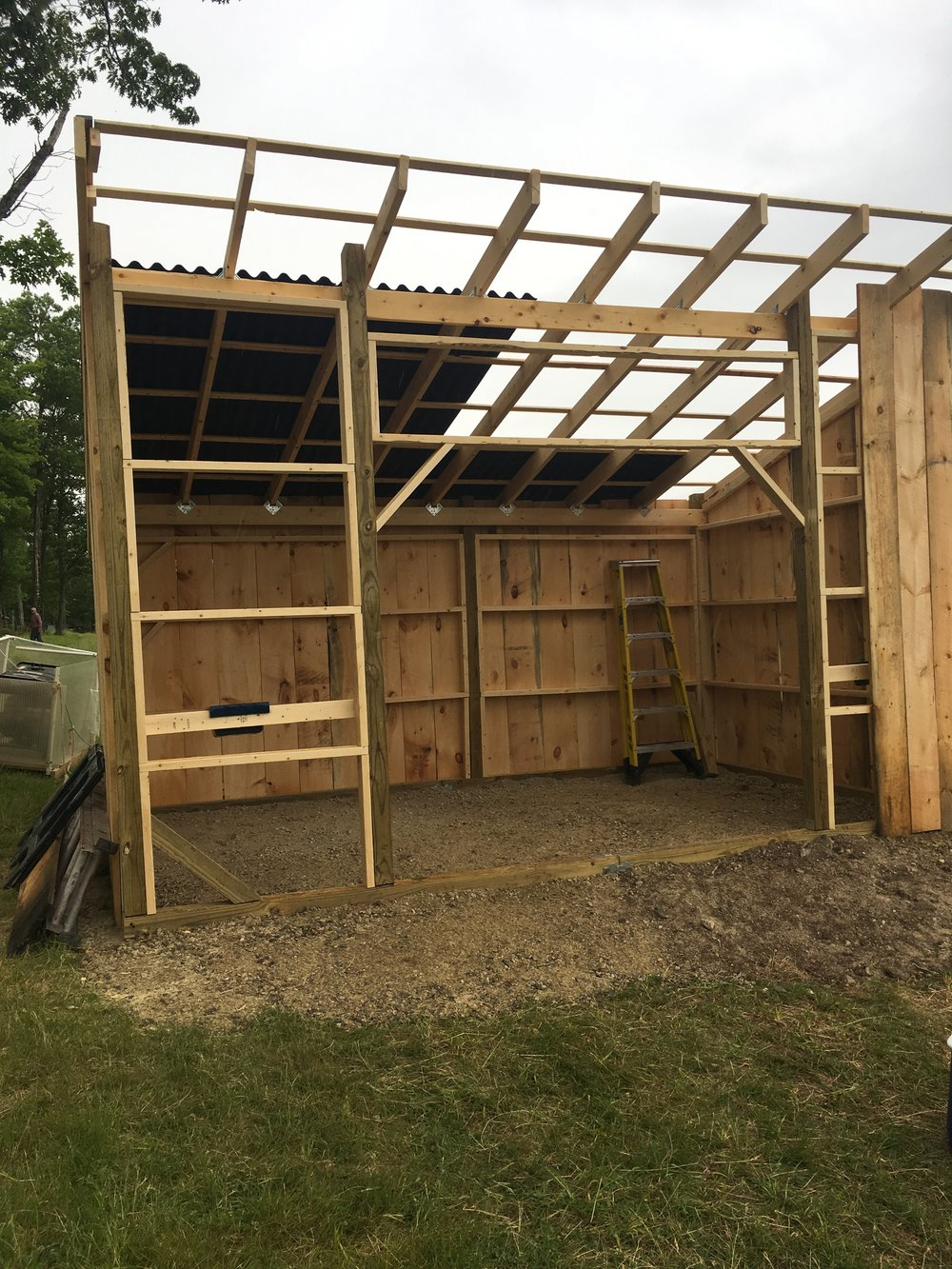 Construction on the new Alpaca Barn