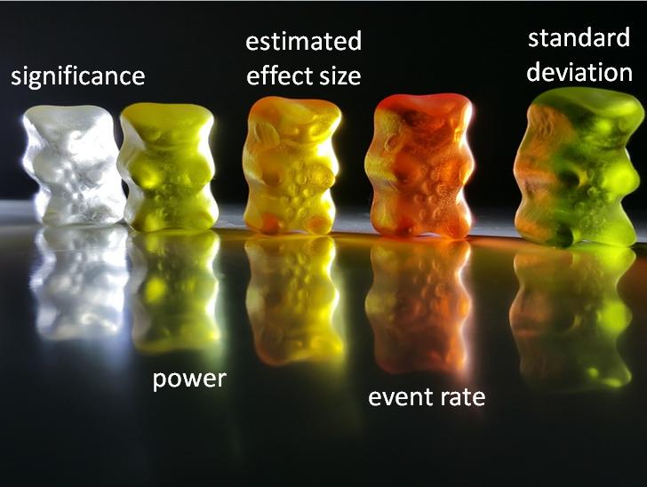 5 bears.png