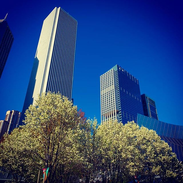 #building #GH5S #chicago #spring