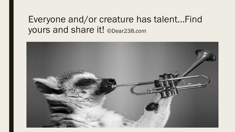 Talent (Week 2).JPG