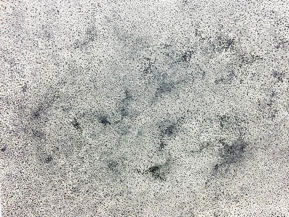 Haze4 / 2015 / the generation of needle pen / 52x38 cm