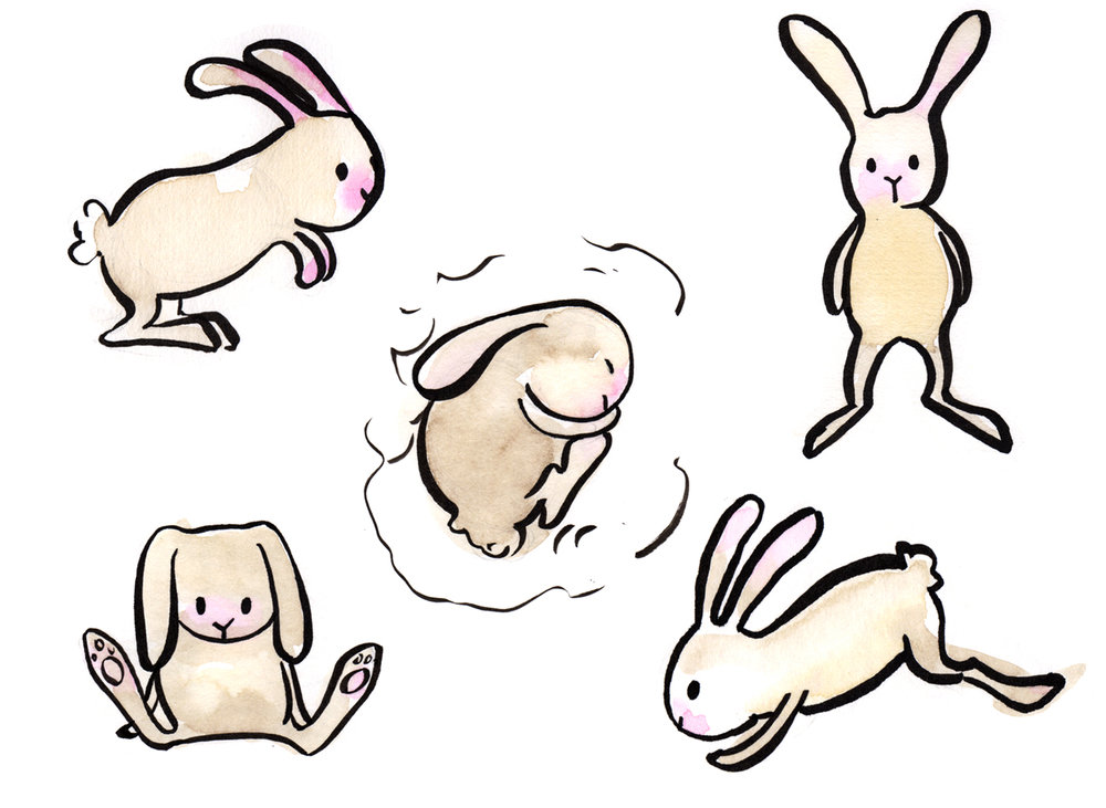bunnies-montage-web.jpg