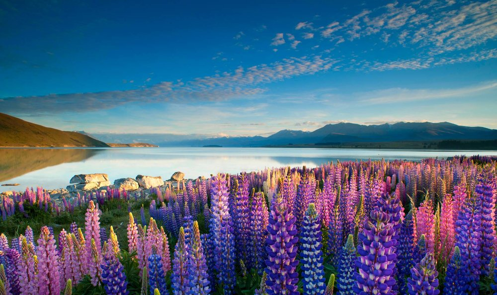 Lake Tekapo is only 45 minutes away......