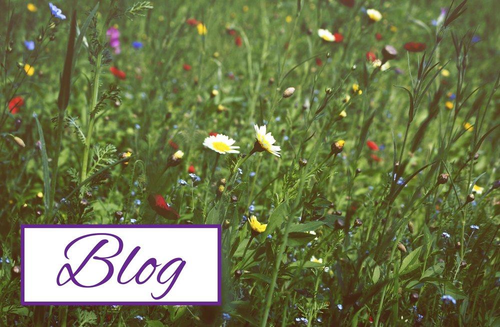 Blog-Thumbnail.jpg