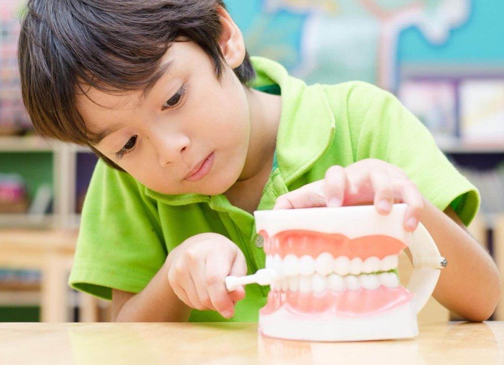 first dental visit -