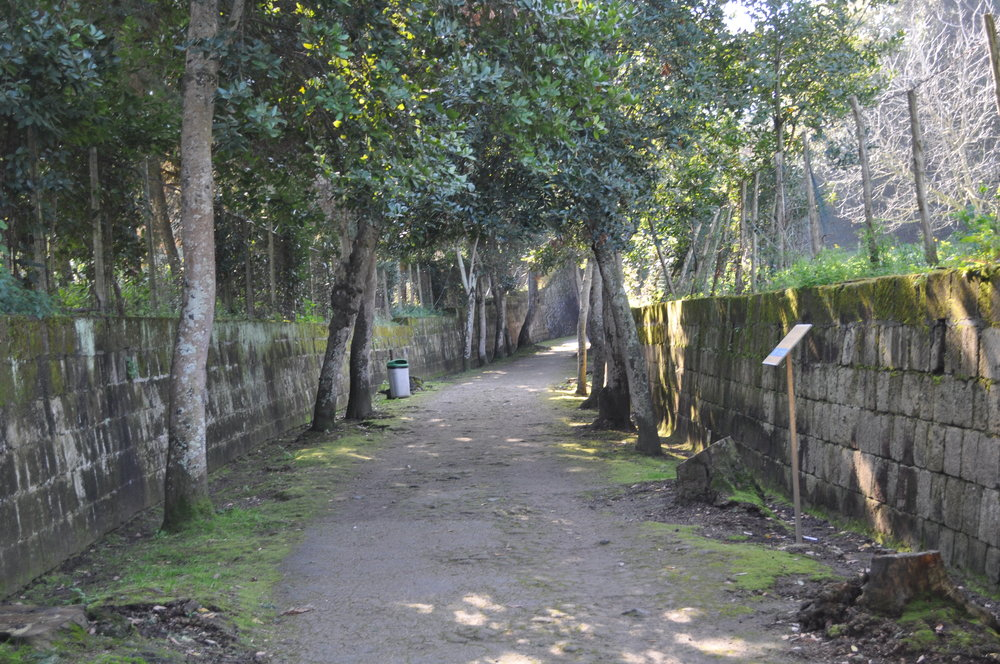 Well worn paths will take you to the temple of Apollo. By Rosina Khan