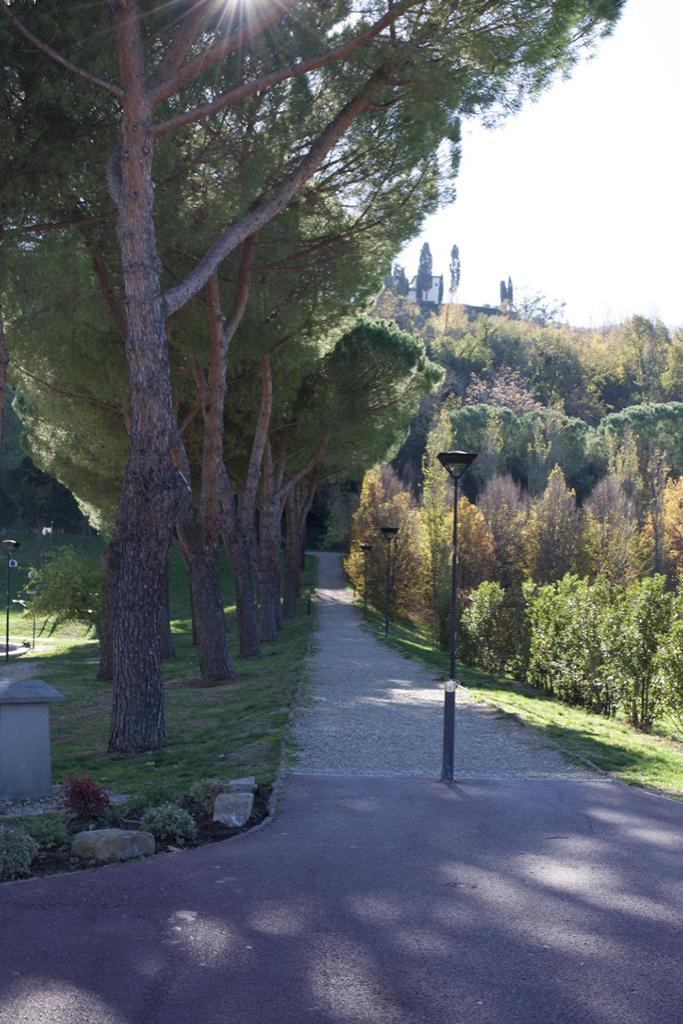 Park in Bagno a Ripoli.jpg