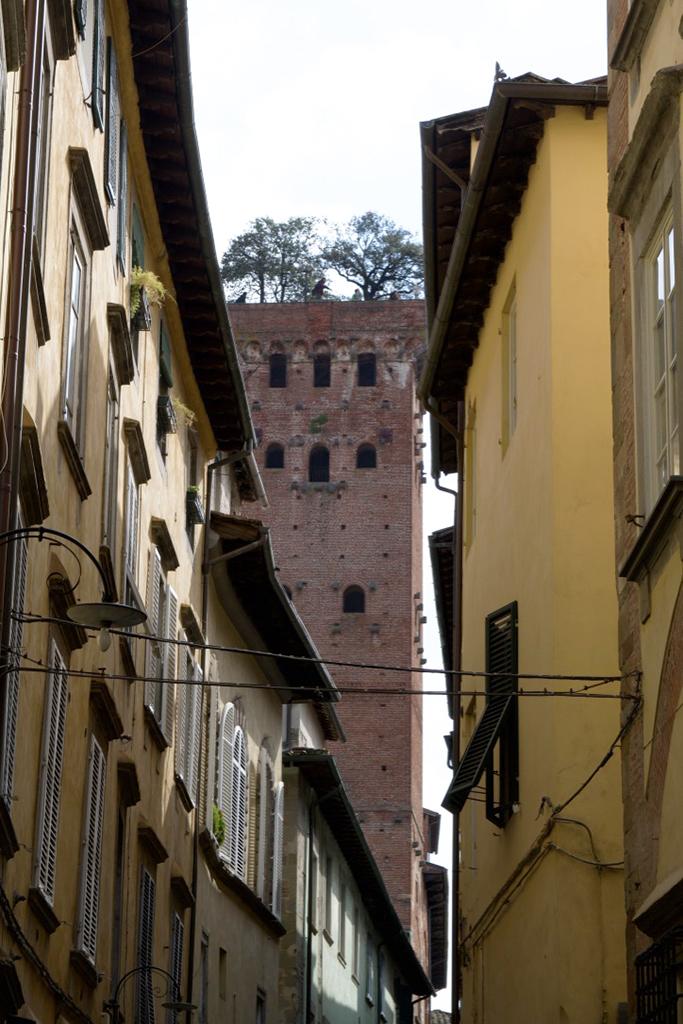 guinigi tower.jpg