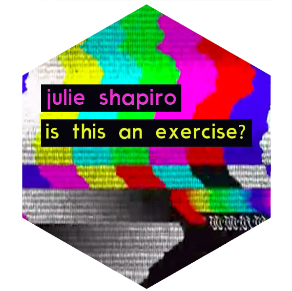 julie shapiro