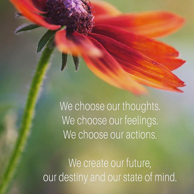 We choose.  #quotestoliveby #energyhealing #choices #meditate #lifecoach #positivevibes #minnesota #mindfulness #flower_daily #healthyself #thought #reikihealing #reiki #intentionalliving #mankatomn #awaken #lovelovelove