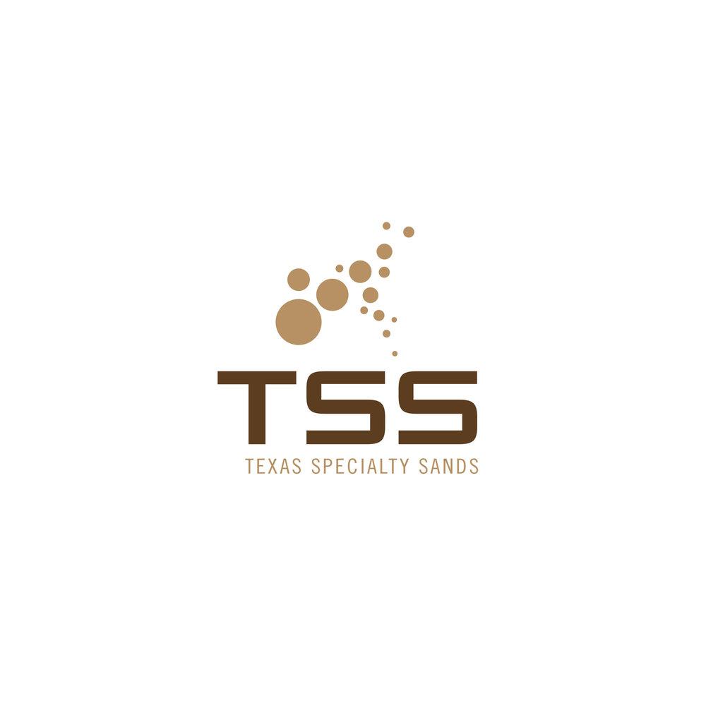 ND-tsssolutions-logo.jpg