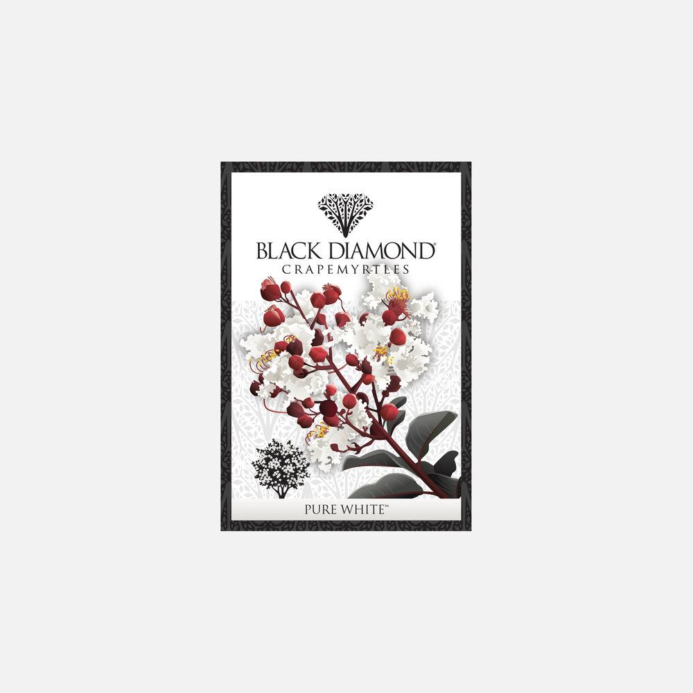 Black Diamond Crapemyrtles plant tag