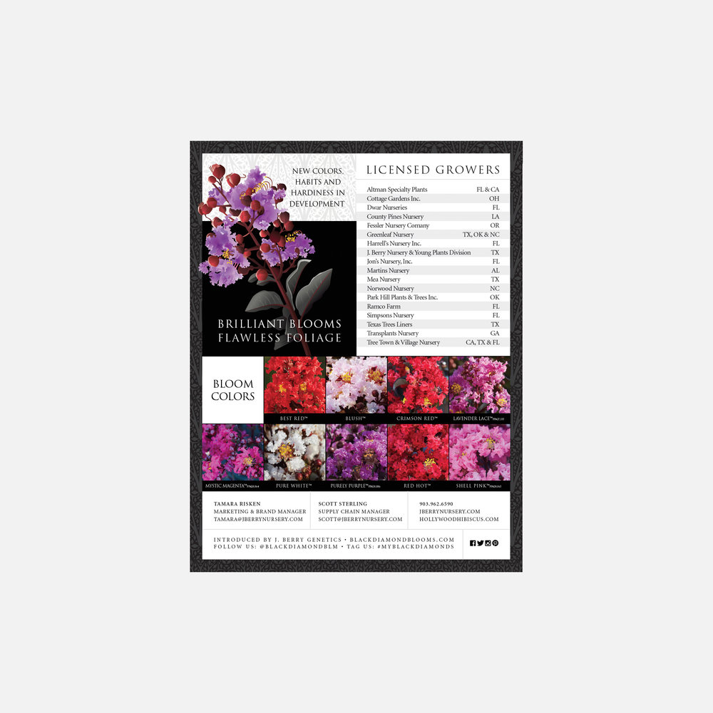 Black Diamond Crapemyrtles informational flyer