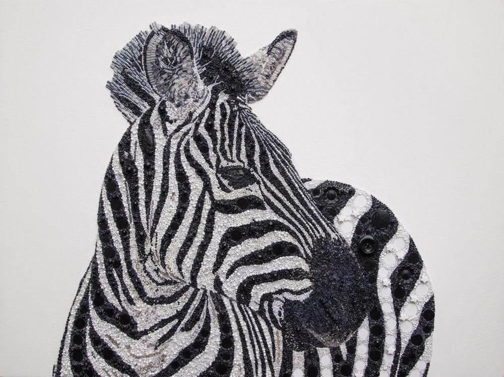 Zebra-3.jpg