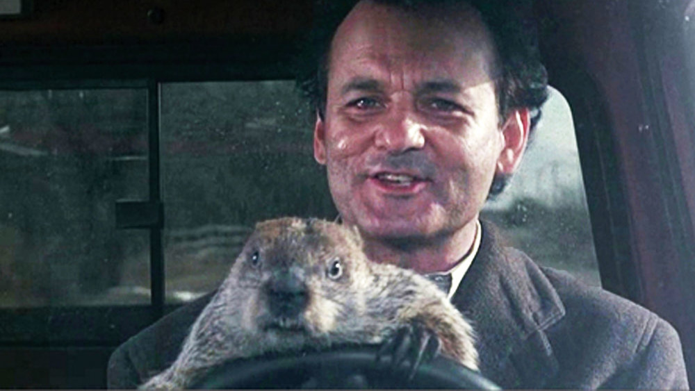 38. Groundhog Day