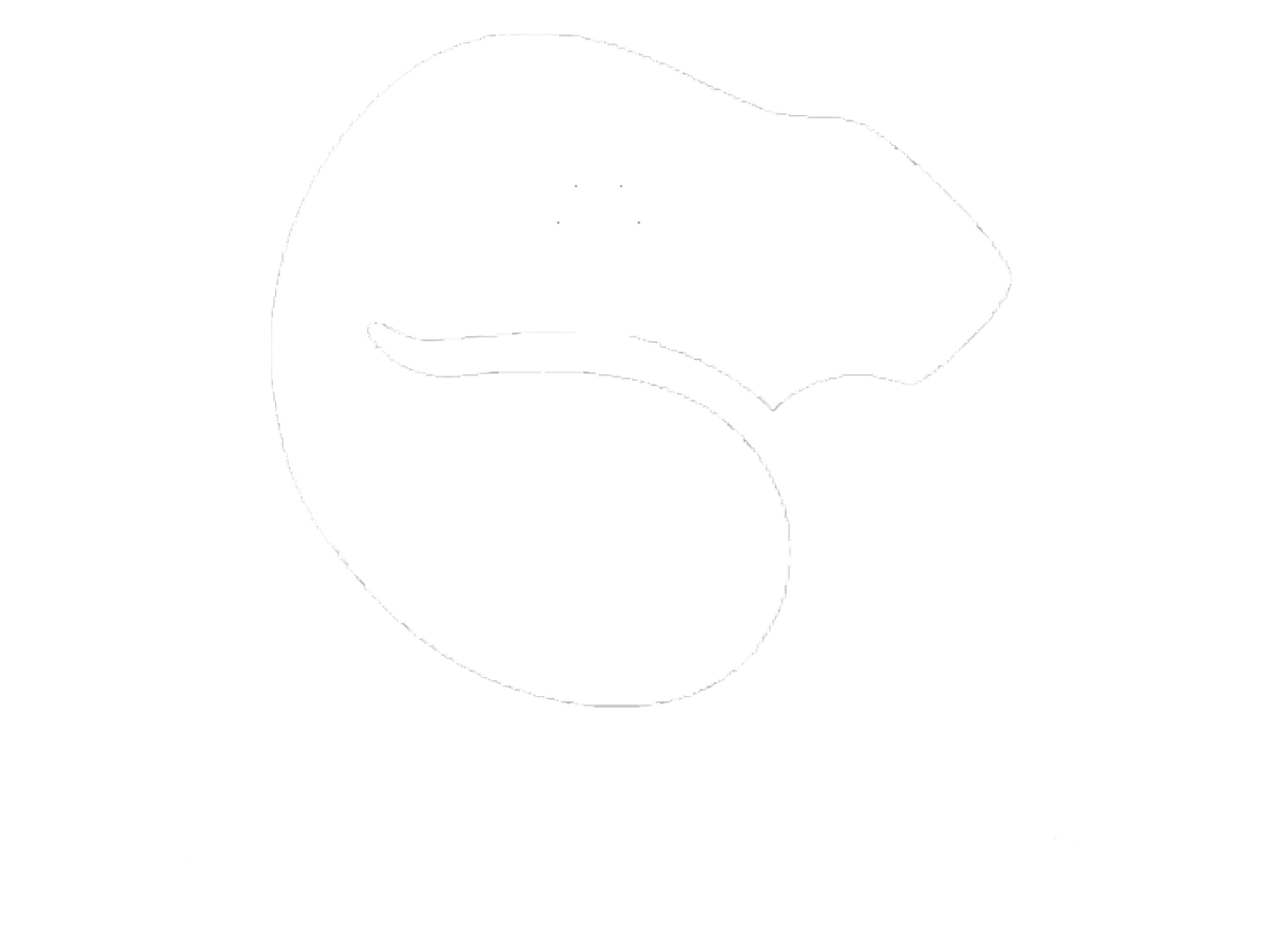 Live Free And Trap