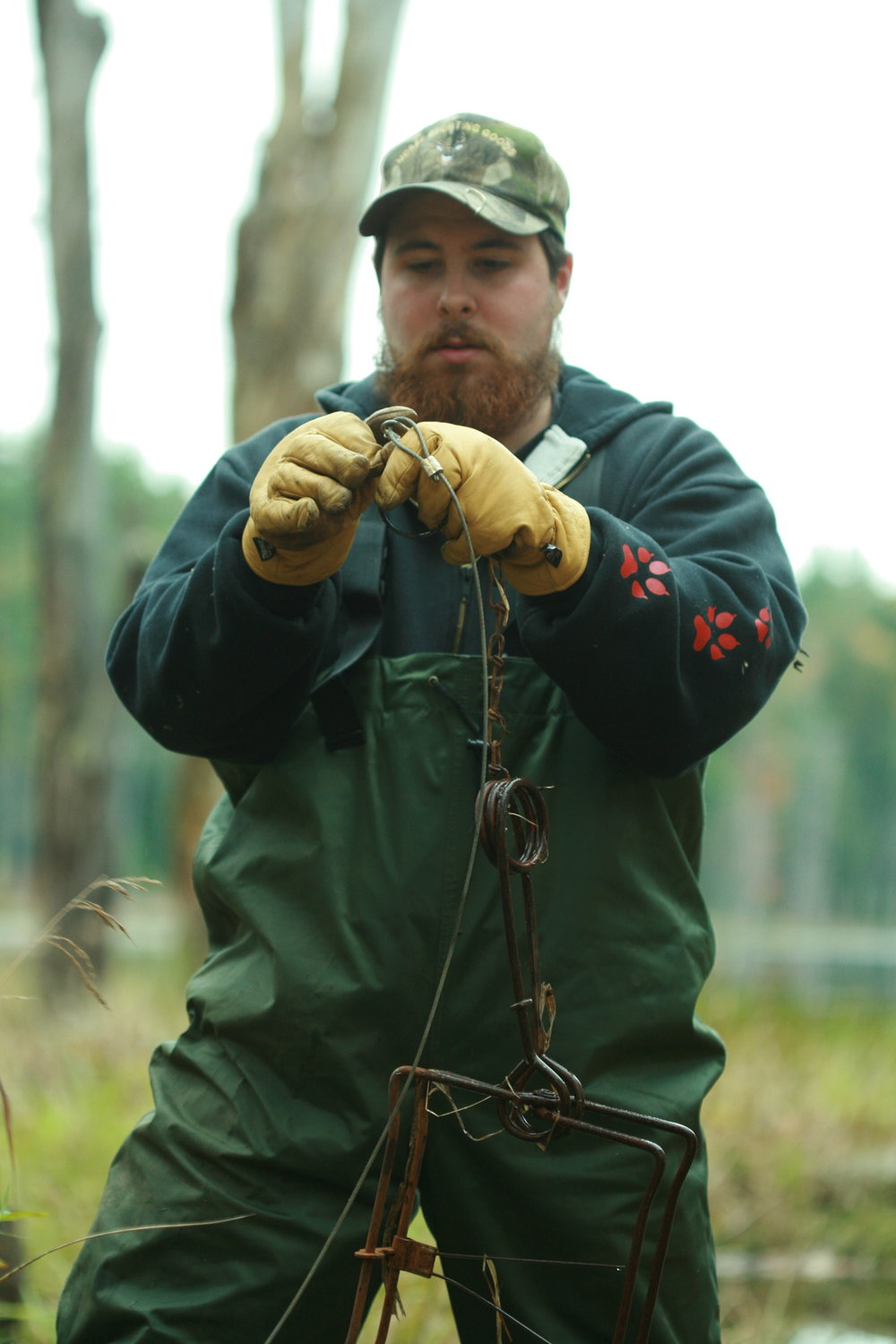 The author configures an anchoring system on a beaver trap. (Photo | copyright  Furbearer Conservation )