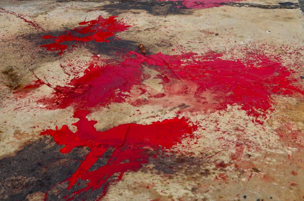 قاضب ، سقطرى - اليمن، الثاني عشر من يونيو 2014. الأرض بعد ذبح عدة خرفان بمناسبة العرس -مائة خروف ذبحت بمناسبة حفل العرس