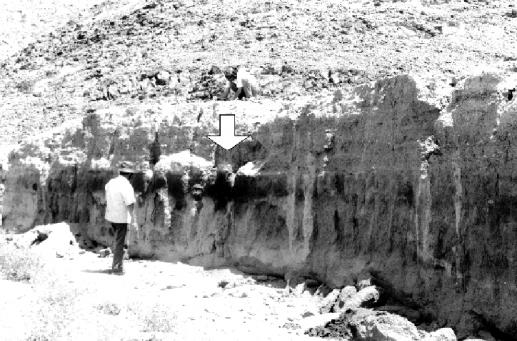 مسكنان يعودان إلى العصر الحجري الحديث تم اكتشافهما بالقرب من رملة السبعتين تصوير   ماري-لويز إينزان