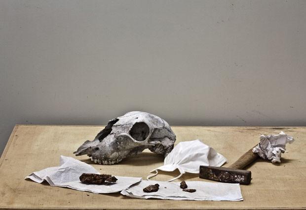 Sofia Borges   Natureza morta com martelo  , 2012