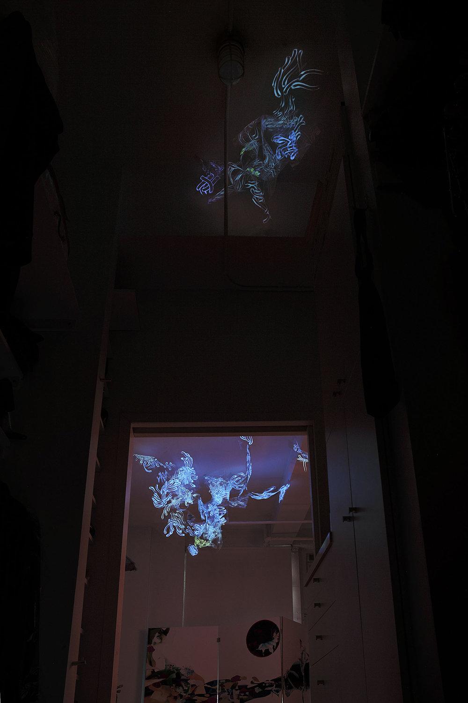 closet_ful_drk_flt.jpg