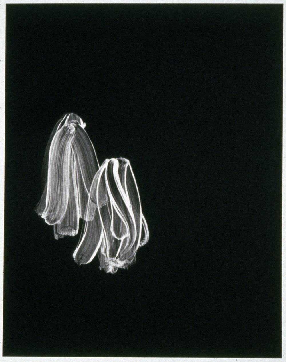 Flaps (prints)  1998-99