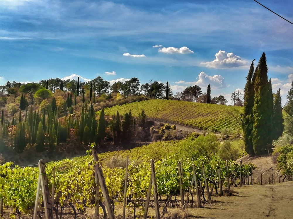 Tuscan hills covered in wineries.