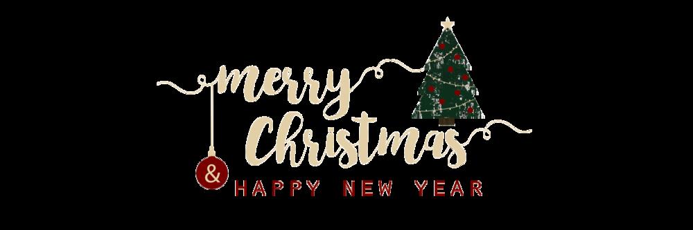 Happy Holidays — Beacher Family Values