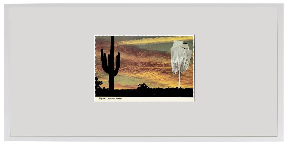 Alissa_Polan-9_Saguaro_Cactus_and_Chandelier_framed.jpg