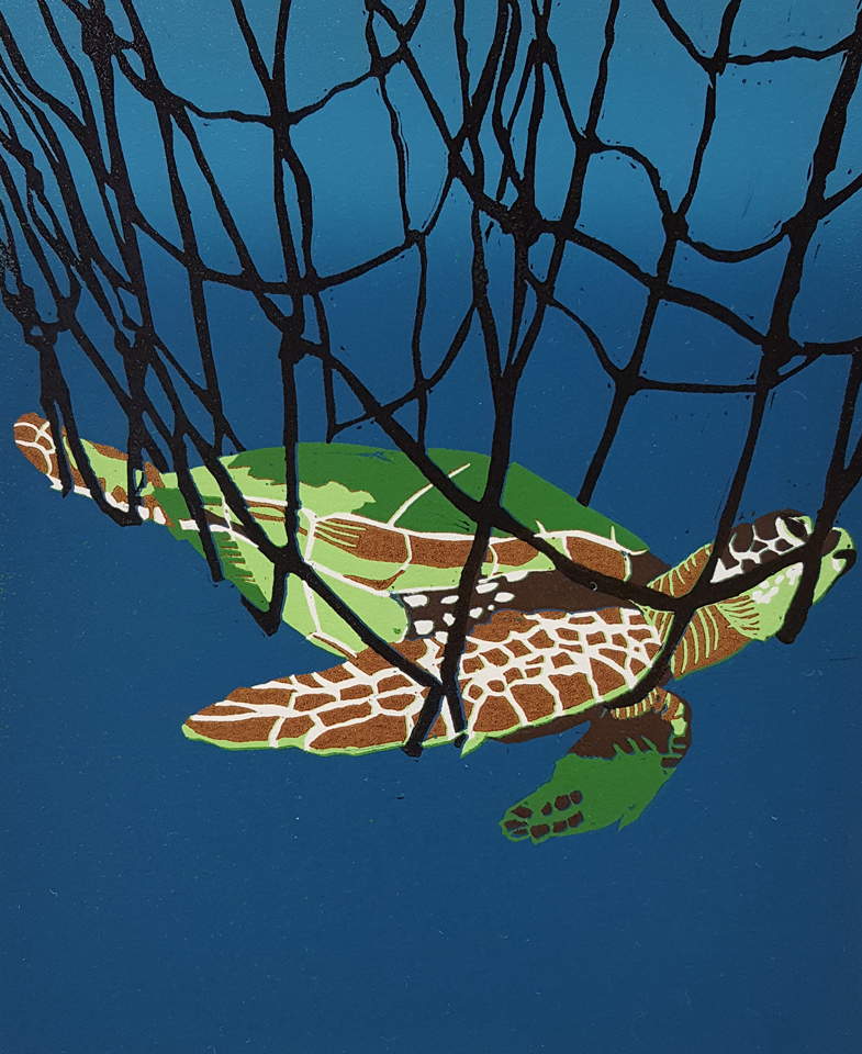 WWillis.Green_Sea_Turtle_1.jpg