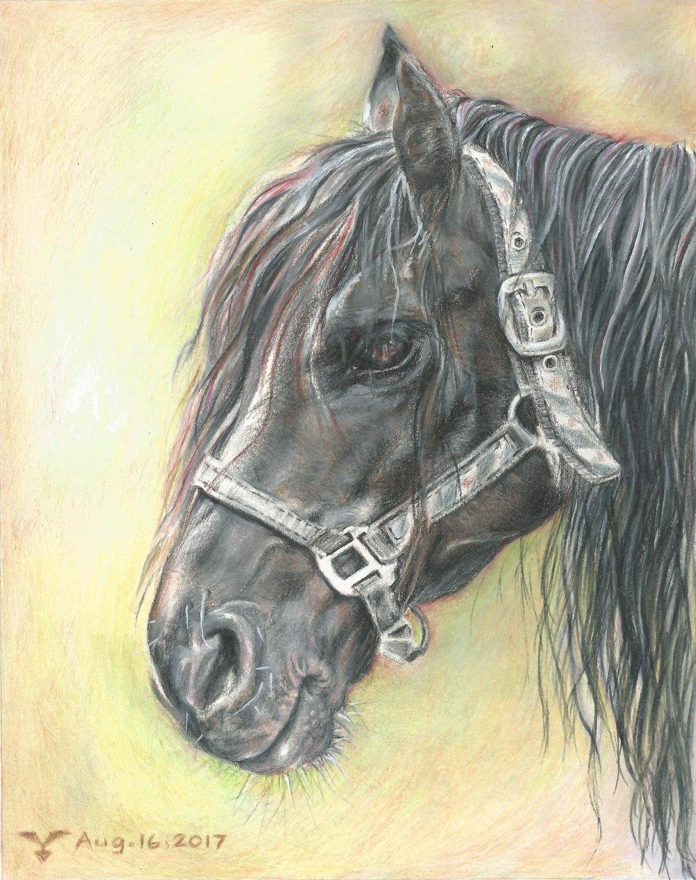 """""""Dark Horse"""""""