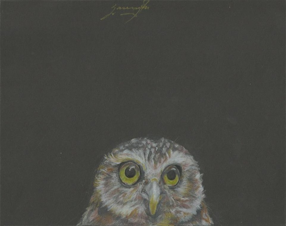 "Owl 3, Wide-eyed, Light yellow eyes, 7.5 x 9.5"", $355"
