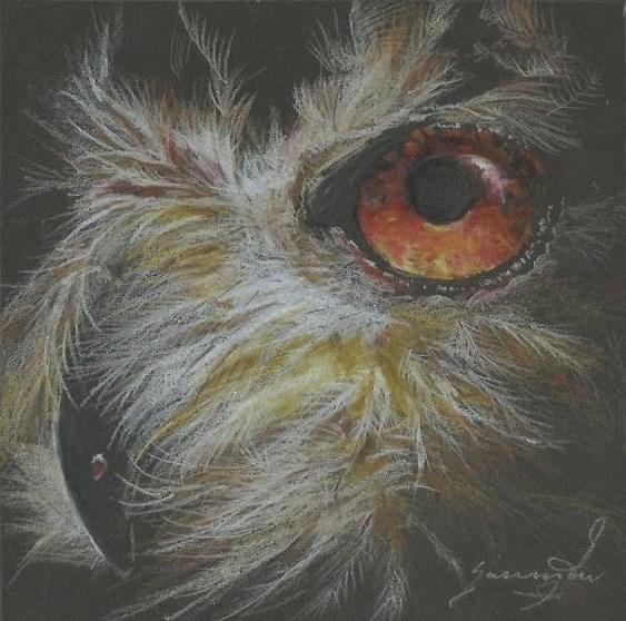 """Owl 6, Close-Up, 5.5 x 5.5"""", $150"""