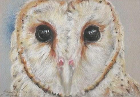 "Owl #10, Heart Shaped Face & Eyes as Black as Coal, 4.5 x 6.5"", $150"