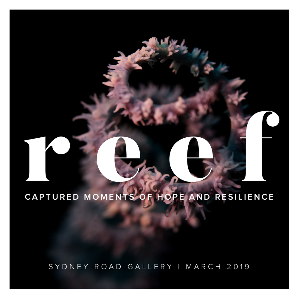 reef - Harriet Spark And Richard WoodgettGuest Speaker: Professor Tim FlanneryWhen: 28th February - 24th March 2019Times: Thursday - Saturday 10am - 4pm & Sunday 9am - 12pmLocation: Sydney Road Gallery, 563 Sydney Road, Seaforth, NSW, 2092Download CatalogueOnline Catalogue