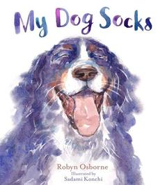 my dog socks.jpg