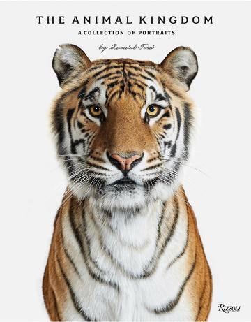 animal-kingdom.jpeg