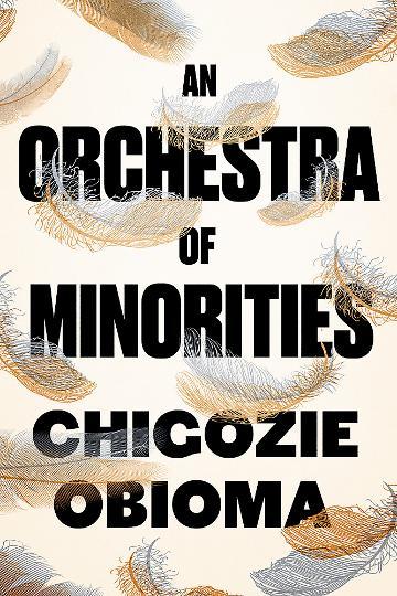an-orchestra-of-minorities.jpeg