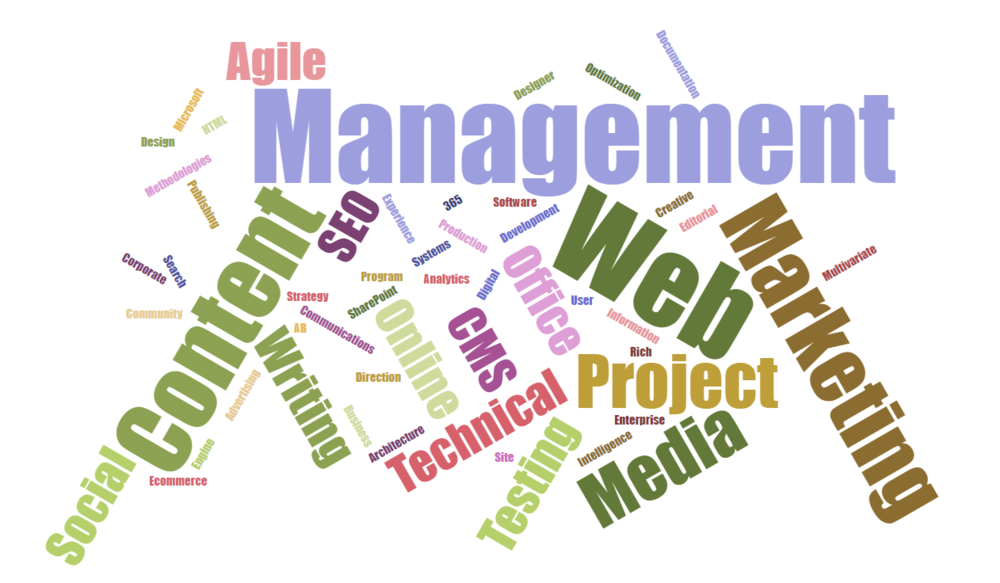 Word cloud generated from  LinkedIn  skills and endorsements.