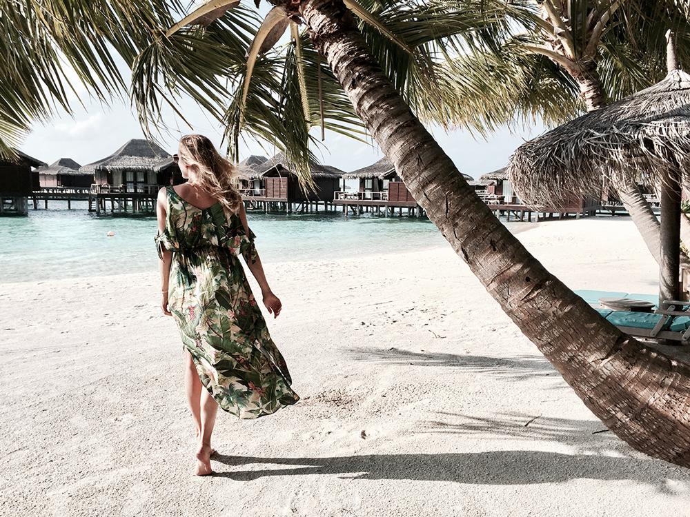 Maledives_topolindra_5.png